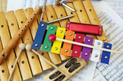 众多乐器中,为什么只有双排键真正做到了兴趣引导教育?