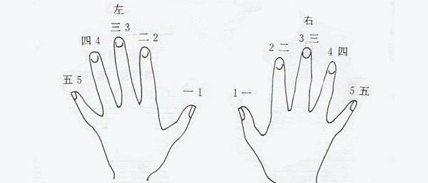 学双排键弹奏的8种基本指法