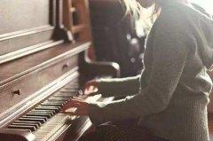 钢琴与双排键合奏与其他合奏形式相比较都有哪些特点