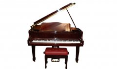 双排键演奏与钢琴音乐艺术的有效结合