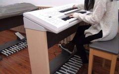《二泉映月》在双排键上的编曲与演奏