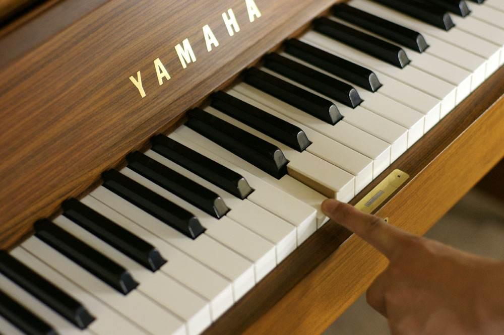 钢琴(电子琴)怎样练习音阶和琶音 ?